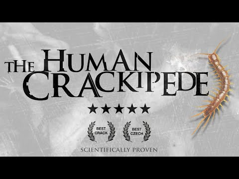 THE HUMAN 𝙲̶𝙴̶𝙽̶𝚃̶𝙸̶𝙿̶𝙴̶𝙳̶𝙴̶ CRACKIPEDE