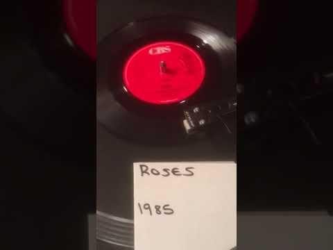 Haywood - Roses from 1985 ( Vinyl 45 )