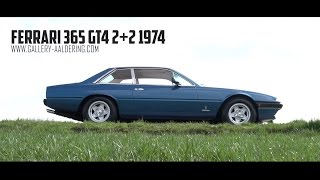 FERRARI 365 GT4 2+2 - 1974 | GALLERY AALDERING TV