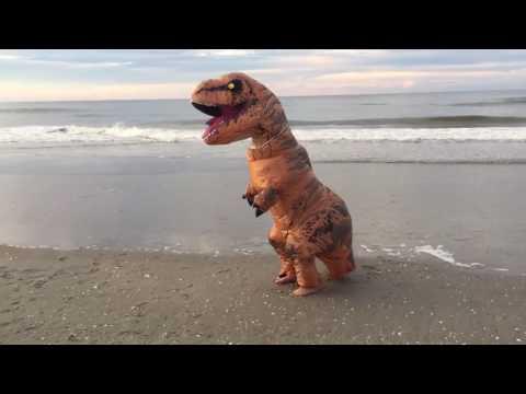 T-Rex Plays On The Beach
