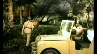 Daktari (Elefantendiebe, 1966)