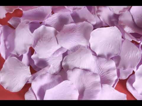 L-wiz - Lavender Wedding