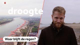 Hoe een gortdroge zomer Nederland verschrompelde