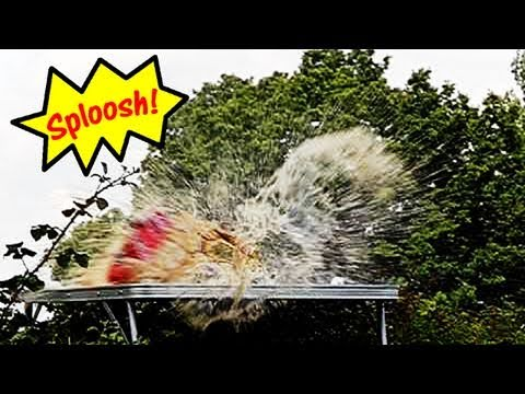 Fieldsports Britain - Exploding Coke cans, foxes, airguns an