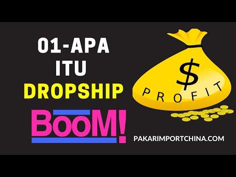Apa Itu Dropship 2020 ?