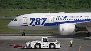 熊本空港 プッシュバック ALL NIPPON AIRWAYS BOEING787-8 JA821A