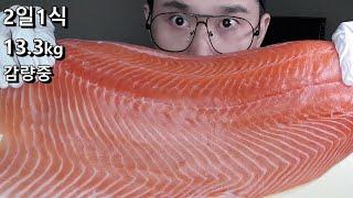 2일1식 다이어트 연어 먹방 ASMR 연어회 통연어 생…