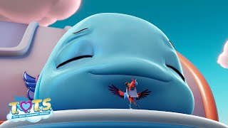 Gambar cover Wyatt the Whale Profile 🐳 | T.O.T.S.| Disney Junior