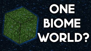 Minecraft World With ONE Biome?
