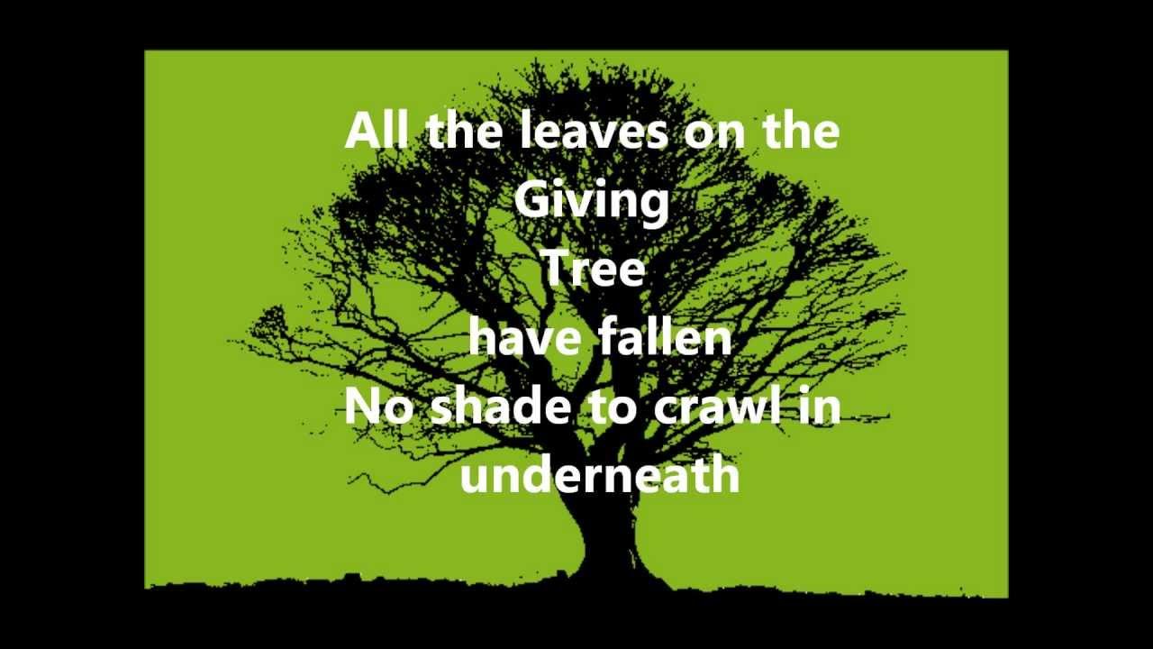 plain-white-ts-the-giving-tree-with-lyrics-ludvig-sandahl