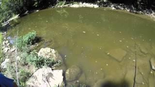 Summer Creek Smallmouth Fishing