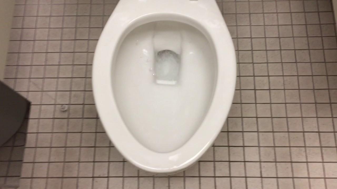 Briggs 1 6 Gpf Toilet