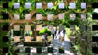 видео Израиль глазами очевидцев: прогулка по Тверии и ручной 3D аттракцион