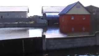 ужасный потоп в гомеле