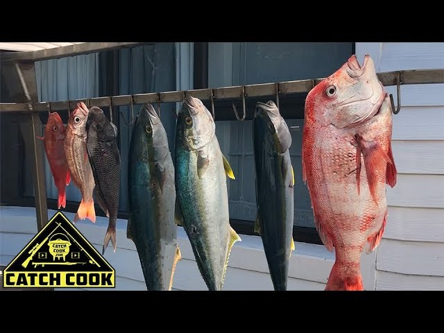 Epic spearfishing the Southern tip of Africa! [Catch Cook] Struisbaai, South Africa