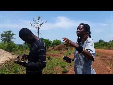 Ghana Benu Village My Plot
