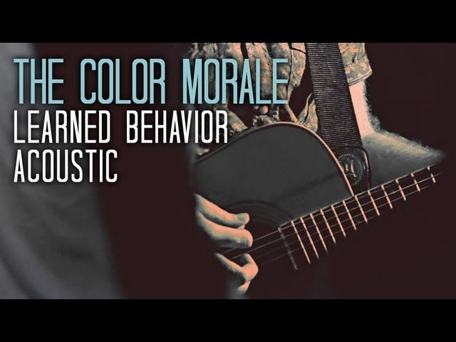 the-color-morale-learned-behavior-official-live-acoustic-video-iwantmyctv