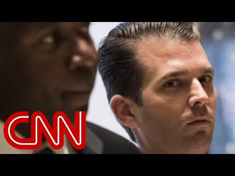 NYT: Gulf emissary offered Trump Jr. 2016 campaign help