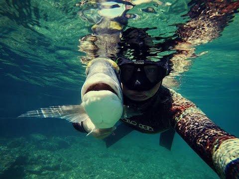 Spearfishing Croatia 2014