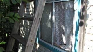 Жительница Кургана забиралась в дачные домики, чтобы поесть и напакостить(, 2015-07-10T11:35:05.000Z)