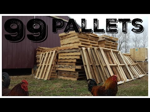 What Will We Do With 99 Pallets?