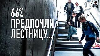 66 процентов предпочли подняться по лестнице...