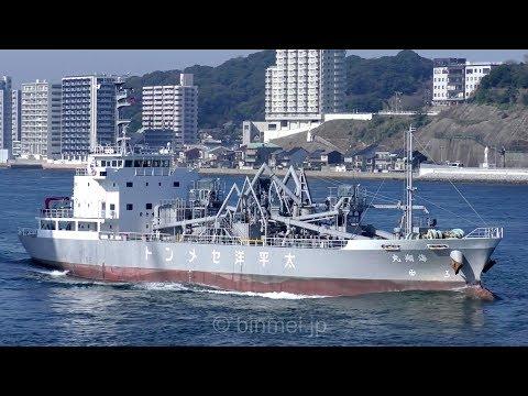 太平洋セメント セメント運搬船 海翔丸 / KAISHO MARU - Asia Pacific Marine Corp cement carrier