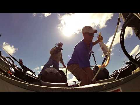 Catching Blue Catfish On Humps in Summer