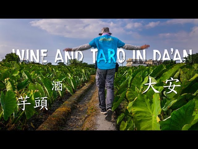 Winery in Taichung -- Da'an Farmer's Association (大安區農會製酒廠)