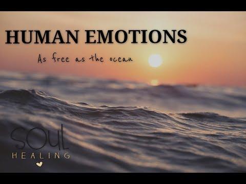 Feelings - As free as the ocean