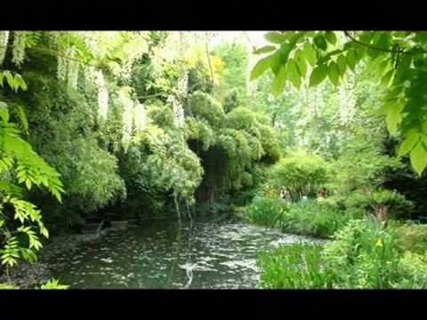 Красивый сад художника Клода Моне в Живерни скачать