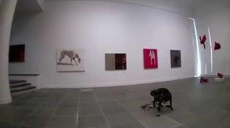 Häntä pystyyn! Terveisin kissat ja koirat -näyttely Oulun taidemuseossa