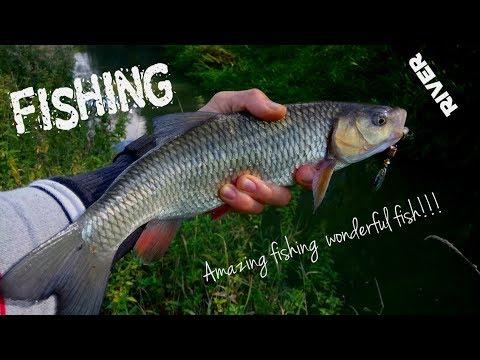 Fishing In River Witham - Žvejyba Anglijos Upėje, Kuri Labiau Panaši I Lietuvišką Griovį!