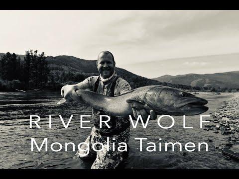 Taimen Flyfishing Mongolia 2019