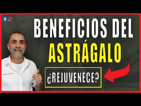 Beneficios del astragalo: 7 Propiedades del Astragalo