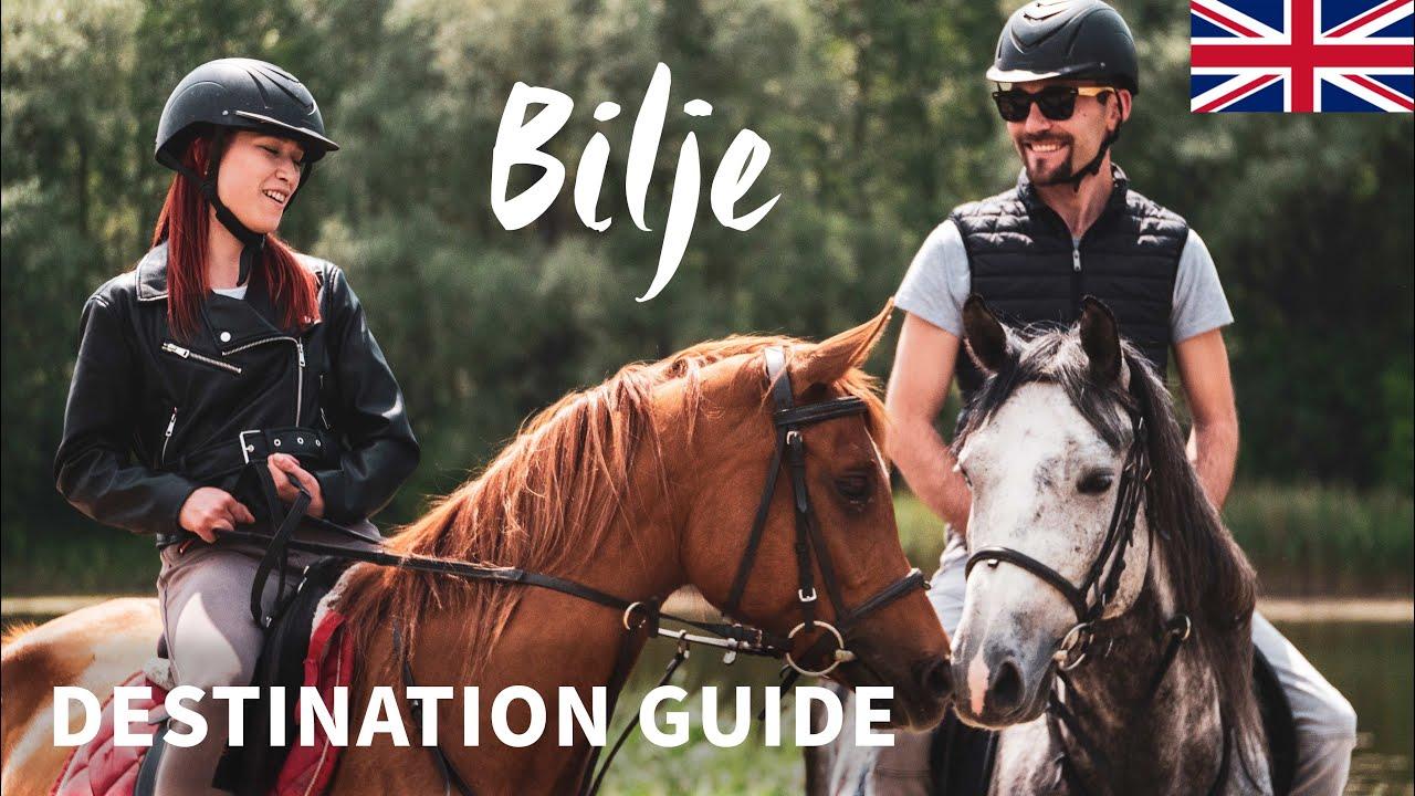 Bilje   Destination guide   Continental Croatia   Kopački rit   English version   4K