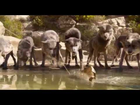 Download The Jungle Book (HD, 2016). Water Truce