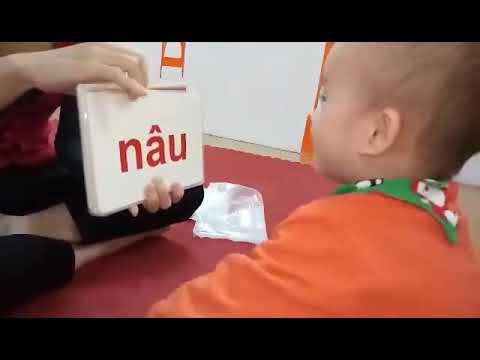 Tùng Anh 6 11 2015   Lớp Tiny 1 Tại      Amon Kindercare   Chăm Sóc Và Giáo Dục Trẻ Bằng Trải Nghiệm