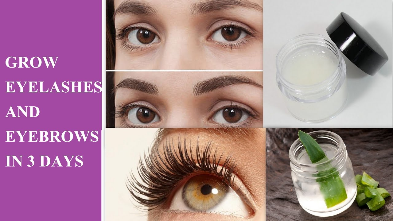 HOW TO Grow your EYEBROWS THICKER AND FASTER NATURALLY AT ...
