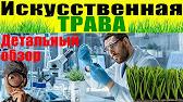 Фт групп предлагает широкий ассортимент искусственной травы в рулонах различной ширины!. Вы можете купить искусственную траву по лучшей цене.