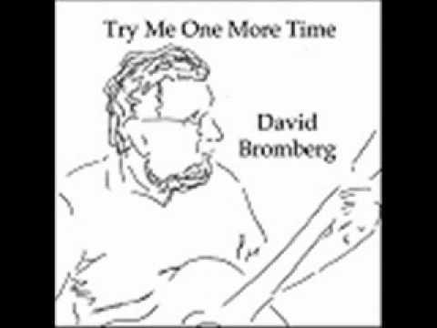 David Bromberg - Shake Sugaree
