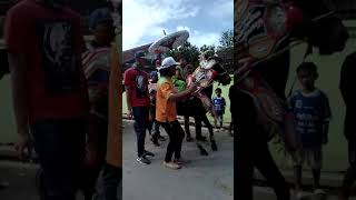 Download Video Kuda Renggong Bandung MP3 3GP MP4