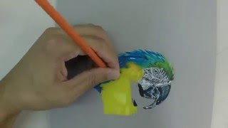 How to draw: Macaw time lapse by Trent Daniels