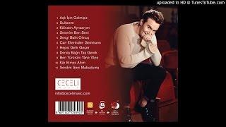 Mustafa Ceceli - Derviş Bağrı Taş Gerek