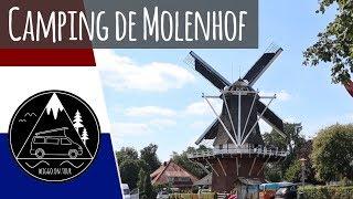 Mit dem Bulli zum Campingplatz de Molenhof | Familiencamping