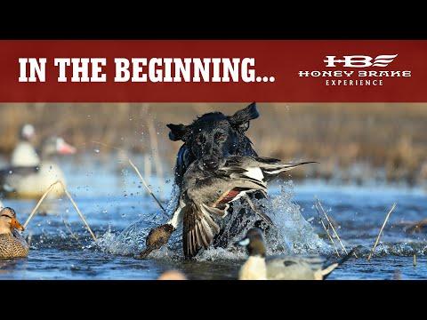 In The Beginning | Opening Week at Honey Brake | Louisiana Duck Hunting