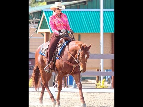 Western Dressage Clinic Norco  WDA Kathleen Elliott Learn Traditional Dressage New Tests 2015