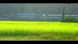 [IRFCA] WDP4B Rangiya - Dekargaon Passenger through Lush Green Paddy Farmland thumbnail