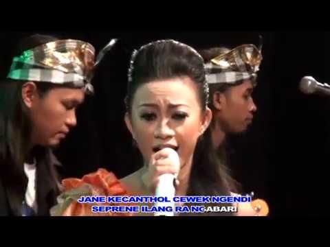 Bojo Lali Omah  - Echa Frandika - Duta Nirwana Music [  ]
