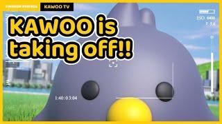 Kawoo TV Launch!🧡   까우TV 전격 오픈!🧡